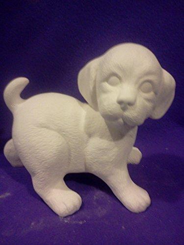 Puppy Standing 7