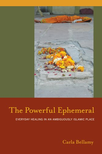 The Powerful Ephemeral: Everyday Healing In An Ambiguously Islamic Place (South Asia Across The Disciplines)