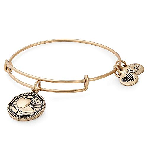 Alex Ani Womens Teacher Bangle