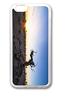 iPhone 6 Cases, Personalized Protective Case for New iPhone 6 Soft Clear Edge Sunset Tree
