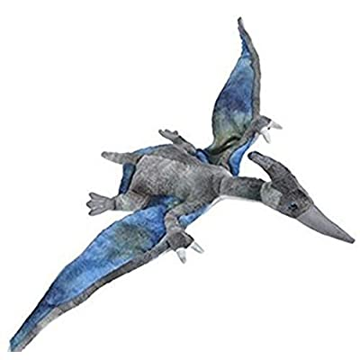 13.5 In ANIMAL DEN PTERANODON - PC: Toys & Games
