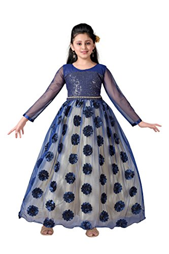 Aarika Girl's Blue Angel Embroidered Gown with Embellished Top (G-2856-N-BLUE_32_10-11 Years) by Aarika