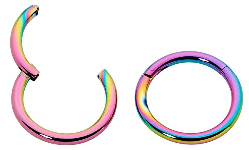 1 Pair Stainless Steel 18G (Thin) Hinged Segment Ring Hoop Sleeper Earrings Body Piercing - 9mm Rainbow