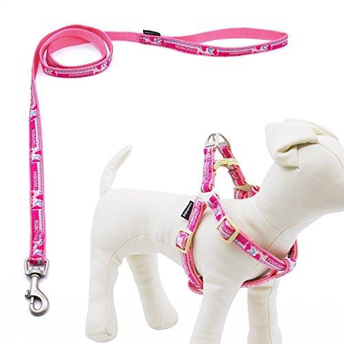 Touchdog Set Laisse de sécurité durable en nylon de haute qualité et Harnais pour peits et moyennes chiens, superbe pour promenade et entraînement, M, Rose