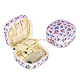 Teamoy Small Travel Jewelry Case, Portable Womens