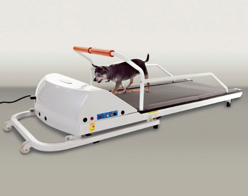 PetRun PR710 Dog Treadmill by GoPet