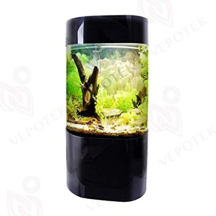 Buy 35 Gallon Aquarium Tank Online at Low Prices in India
