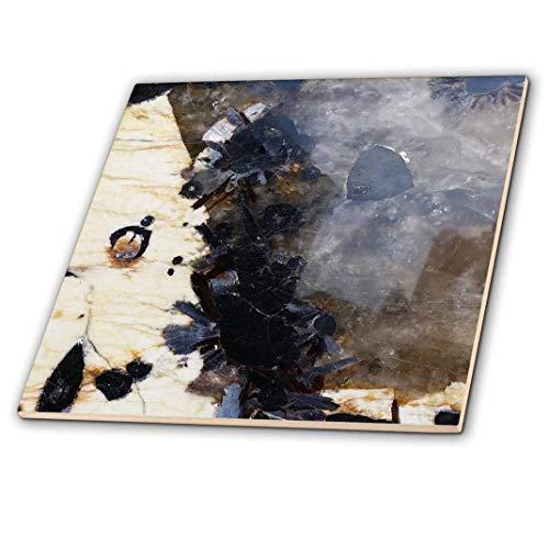 3D Rose Image of Beautiful Black and Gray Blue Ivory Granite Ceramic Tile, Multicolor