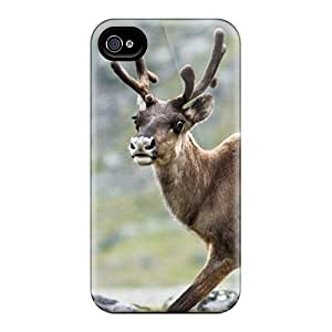 Rugged Skin Cases Covers For Iphone 6plus- Eco-friendly Packaging(reindeer In Kebnekaise)