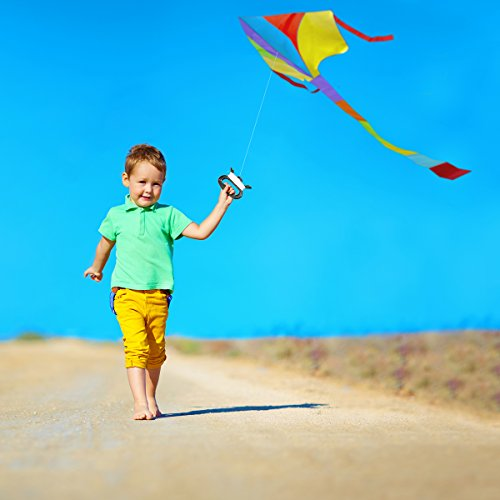(Limited Edition) Kite for Kids, Teens and Adults, Kit with Handle & String - Highest Quality Kites for Amateur and Pro - Great Outdoor Family Fun (New 2018 Easy Flyer)