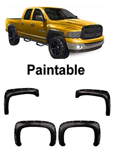 01 Dodge Ram 1500 Fender - 8