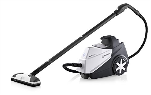 Reliable Brio 250CC Steam Cleaner, Multi-Purpose