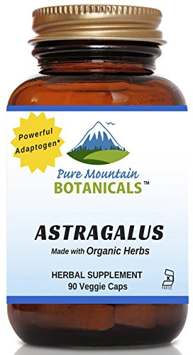 astragalus root extract organic - 2