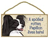 (SJT61949) A spoiled rotten Papillon (Black & white) lives here wood sign plaque 5