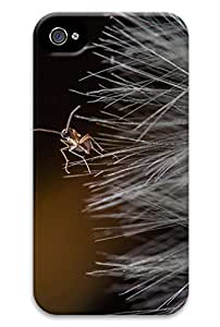 Online Designs Dandelion and ants PC Hard new For Case Ipod Touch 5 Covers for guys