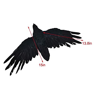 Zebery 2-Pack Realistic Crows Lifesize Extra Large Handmade Black Feathered Crow for Halloween Decorations Birds, L: Kitchen & Dining