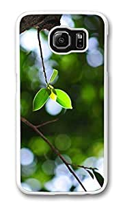 Galaxy S6 Case, S6 Case,Twig Bokeh Summer Shock Absorption Bumper Case Protective Slim Fit Hard PC Cover for Samsung Galaxy S6 White