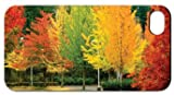 Four Seasons Themed - Fall Foliage - iPhone Cover - White Protective iPhone 4/iPhone 4S Hard Case