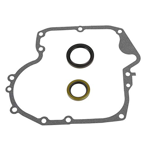 CQYD New 697110 Crankcase Gasket & Oil Seal Combo for Briggs & Stratton 795387 ()