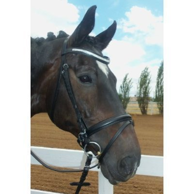 Leather Horse Dressage Bridle Rein product image