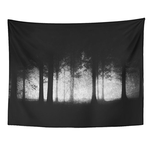 (TOMPOP Tapestry Spooky Dark and Scary Forest Grungy Woods Black Creepy Home Decor Wall Hanging for Living Room Bedroom Dorm 60x80)
