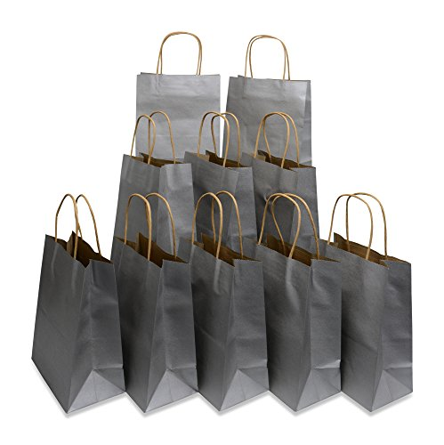 Medium Size Paper Gift Bags with Handles (7.75x4.25x9.75 Inches), Metallic Silver, 2 Dozen