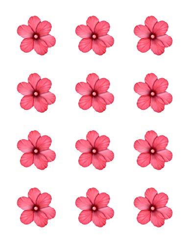 Hibiscus Pink Flowers - Edible Image Cupcake Toppers - Set of 12 Precut - 2 inch Round