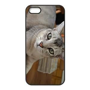 Unique Cat Hight Quality Plastic Case for Iphone 5s