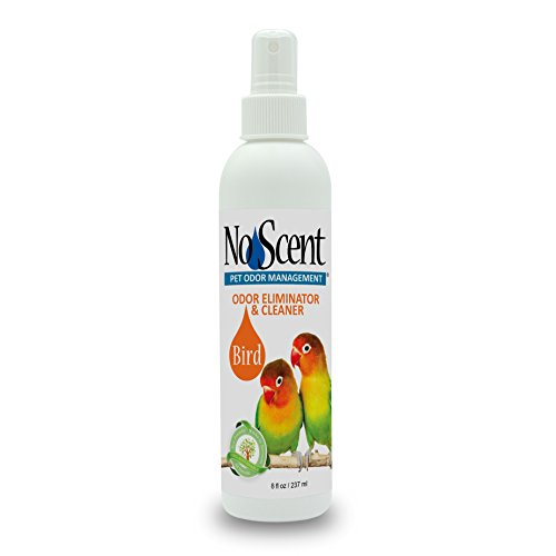 No Scent Bird - Professional Pet Poop Cleaner & Odor Eliminator - Safe All Natural Probiotic & Enzyme Formula Smell Remover Cages Aviary Perches Nests Toys Bedding (8 oz) (Cheap Furniture Outdoor Orlando)