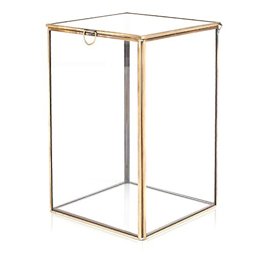 MyGift Clear Glass Plant Terrarium w/Brass Metal Frame/Tabletop Curio Case/Shadow Box