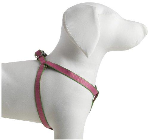 "Harry Barker Chelsea Harness - Pink & Green  - 5/8"" webbing - Small 12"" - 18"""