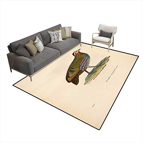 - Kids Carpet Playmat Rug Birds Pheasants 6'6