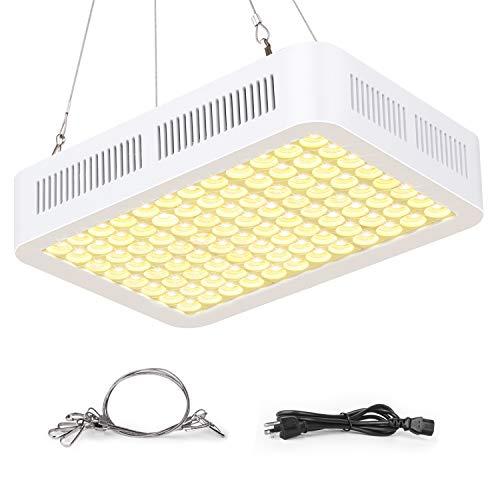 600W Led Grow Light Lumens in US - 9
