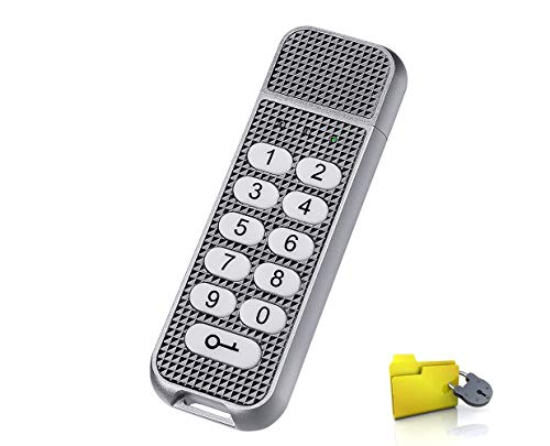 USB Encrypted Flash Drive, Lepin Password Key 32GB Aluminum with Keypad Portable 257-bit AES XTS Hardware for Business and Private Data Protected (Sliver)
