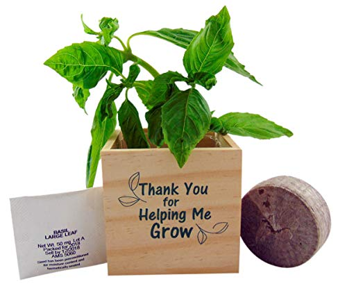 Teacher Gift Basil Plant Pot Set Thank You for Helping Me Grow Wooden Cube, 3 inch