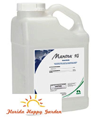 mantra-1g-5-lbs