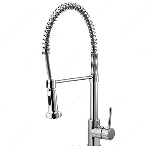 Richelieu Kitchen Sinks and Faucets Accessories Riveo Kitchen Faucet - A184195 - Brushed Nickel by Level USA