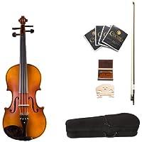 Cecilio CVA-500 15.5-Inch Ebony Fitted Solid Wood Viola