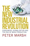 The New Industrial Revolution: Consumers, Globalization and the End of Mass Production by  Peter Marsh Picture