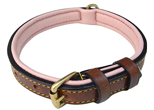 Soft Touch Collars Padded Leather