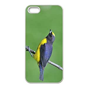 The Bird Hight Quality Plastic Case for Iphone 5s