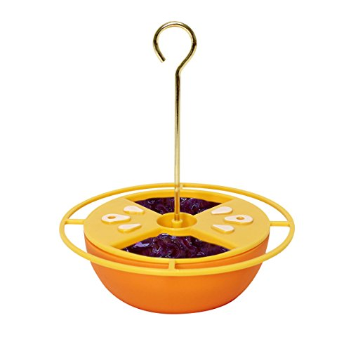 Heath Outdoor Products CF-131 Citrus Buffet Oriole - Oriole Jelly Grape Feeder