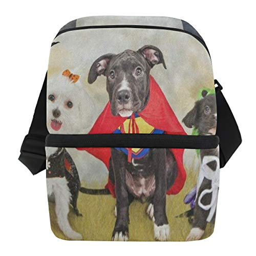 Lovexue Lunch Bag Hipster Puppy Dog Dressed in Halloween Costumes Portable Cooler Bag Mens Leakproof Lunch Storage Zipper Tote Bags for -