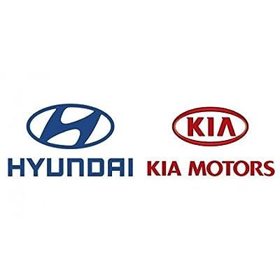Genuine Hyundai 92405-A5100 Reflector/Reflex Assembly, Rear, Left: Automotive