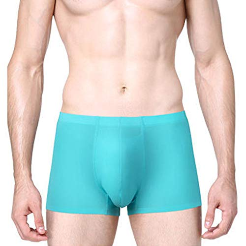 Landscap_Men Underwear Breathable Ice Silk Fashion Boxer Briefs Non-Slip Thin Pouch Underpants (Blue,XXXL) (Silk Stripe Tonal)