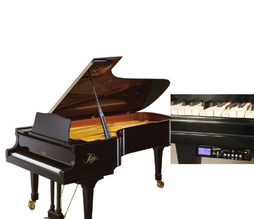 """Kaps of Dresden 'Model C' 6ft 1"""" Auto Play Grand Piano, used for sale  Delivered anywhere in USA"""