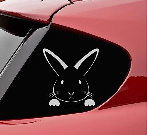 (Peeking bunny rabbit easter Vinyl Decal Sticker (Satin Silver))