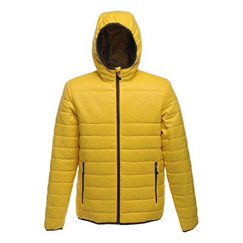 Acadia Giallo Piumino Warmloft Maschile Brillante giallo Di Tocco Regata Maniche Colore Lunghe rwrBSq7