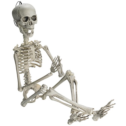 Prextex 19  Posable Halloween Skeleton  Full Body Halloween Skeleton With Movable  Posable Joints And 2 Sets Of Body Accessories For Best Halloween Decoration
