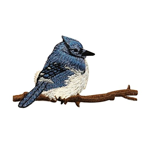 ID 0520 Blue Jay Bird Patch Perch Branch Embroidered Iron On Applique (Applique Blue Jays)